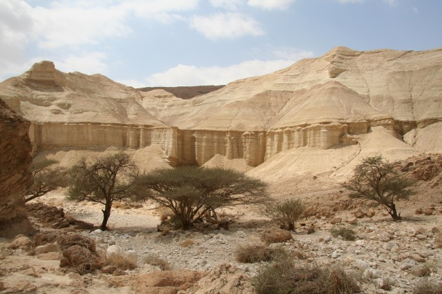 Saadia's Hike up Nachal Zohar and the Judean Desert -  near the Dead Sea